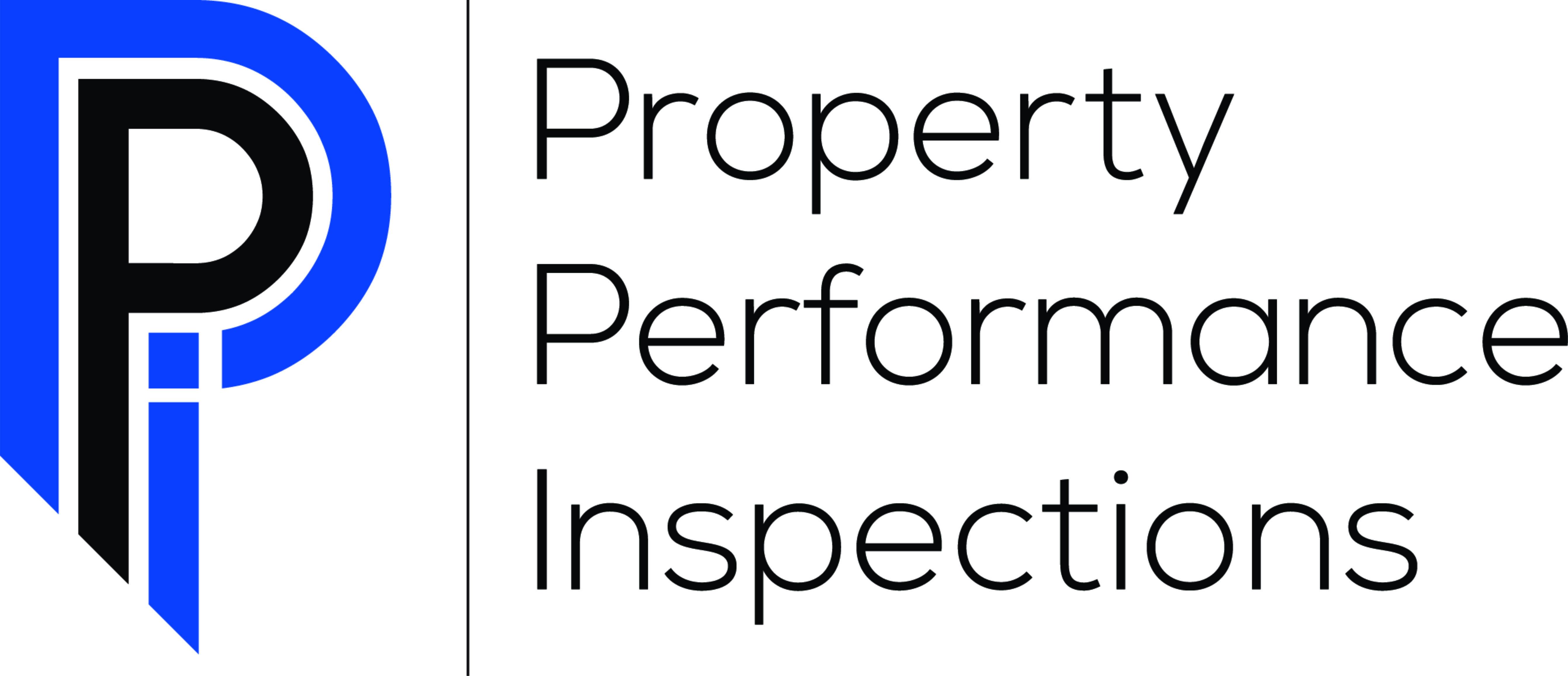 Ppi website logo