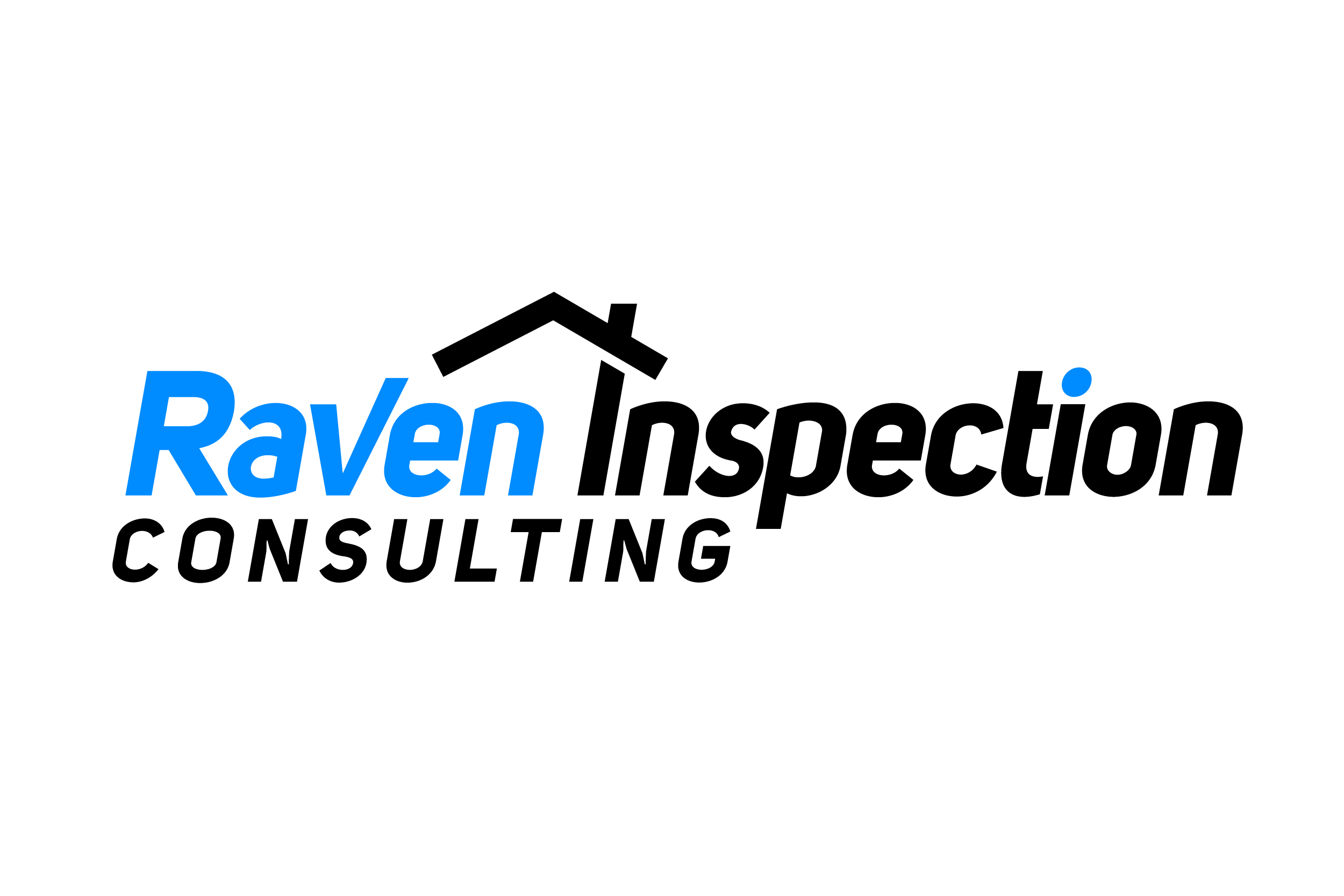 Raveninspection finalfiles 01