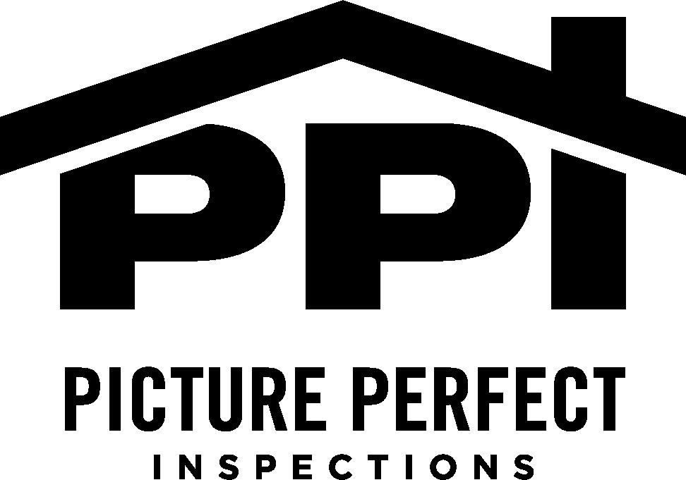 Ppi black transparent