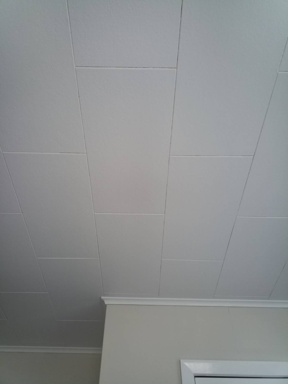 Sample report inquest ceiling material and relevant defect assessment dailygadgetfo Gallery